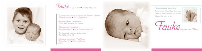 Update geboortekaartjes