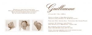 Het geboortekaartje van Guillaume